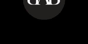 Professionalisering van academici in het PO